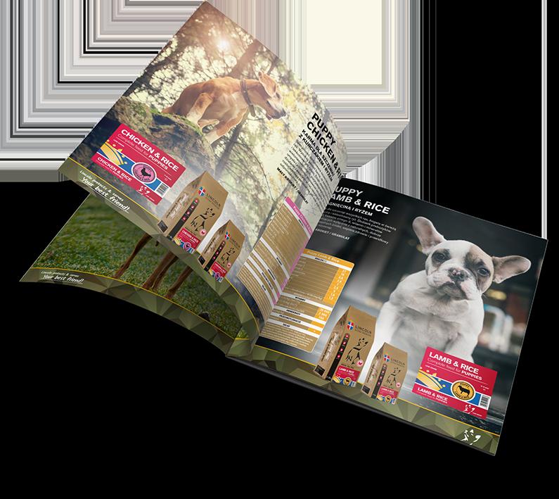 Nasze projekty i usługi dla Lincoln Pets